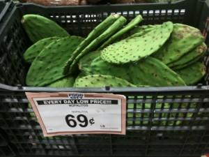 Essbarer Kaktus