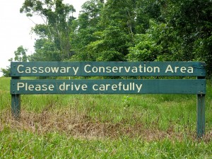 Mission_Beach_cassowary_sign_1